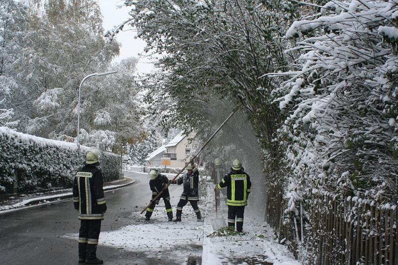 Schneelast durch Neuschnee